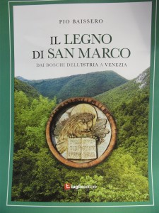Il Legno di San Marco